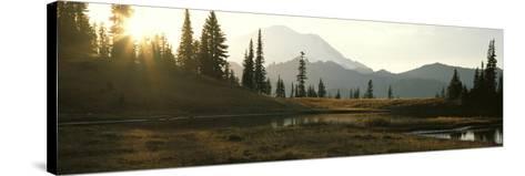 USA, Washington, Mount Rainier National Park--Stretched Canvas Print