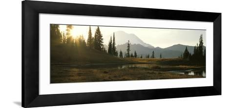 USA, Washington, Mount Rainier National Park--Framed Art Print