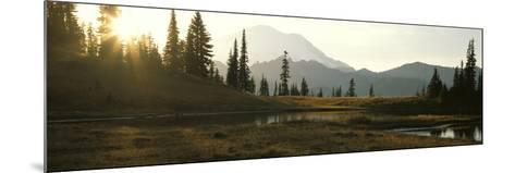 USA, Washington, Mount Rainier National Park--Mounted Photographic Print