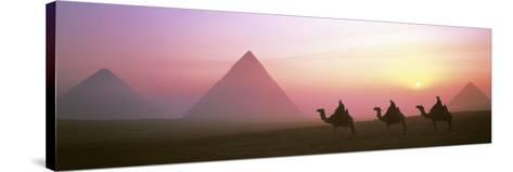 Giza Pyramids Egypt--Stretched Canvas Print