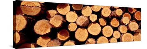 Logs--Stretched Canvas Print