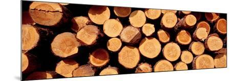 Logs--Mounted Photographic Print