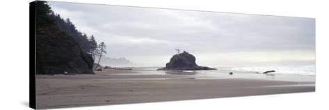 Coast La Push Olympic National Park WA--Stretched Canvas Print