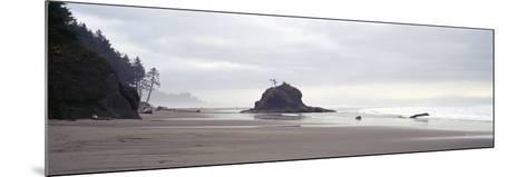 Coast La Push Olympic National Park WA--Mounted Photographic Print