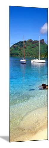 Sailboats in the Ocean, Tahiti, Society Islands, French Polynesia--Mounted Photographic Print