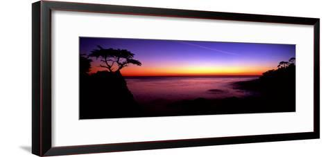 Silhouette of Lone Cypress Tree on a Cliff, Pebble Beach, California--Framed Art Print