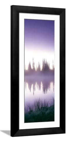 Reflection of Trees in a Lake, Mt Rainier, Mt Rainier National Park, Pierce County, Washington S...--Framed Art Print