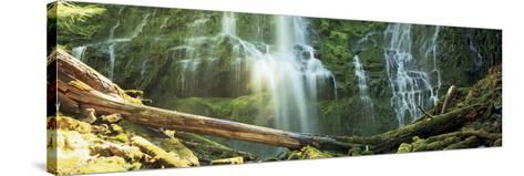 Waterfall in a Forest, Proxy Falls, Three Sisters Wilderness Area, Willamette National Forest, L...--Stretched Canvas Print