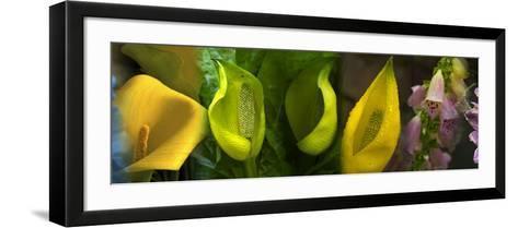 Multiple Images of Flowers--Framed Art Print