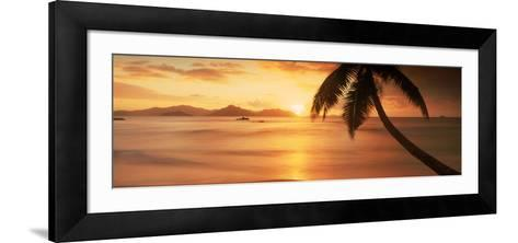 Silhouette of a Palm Tree on the Beach at Sunset, Anse Severe, La Digue Island, Seychelles--Framed Art Print