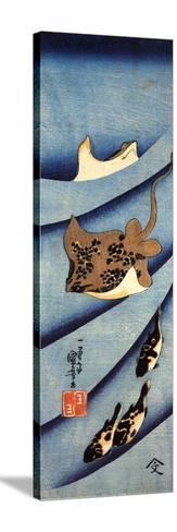Stingrays-Kuniyoshi Utagawa-Stretched Canvas Print