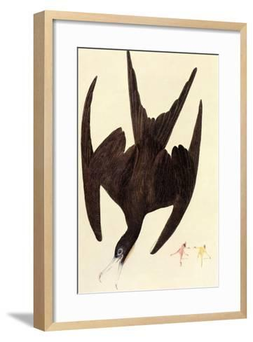 Magnificent Frigate Bird-John James Audubon-Framed Art Print