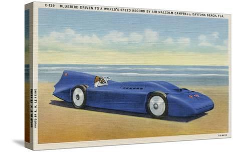 The Bluebird 5-R.H. Le Sesne-Stretched Canvas Print