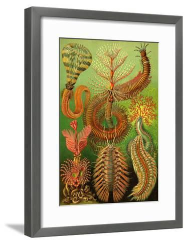 Worms-Ernst Haeckel-Framed Art Print
