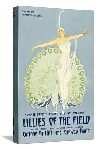 Lilies of the Field--Stretched Canvas Print