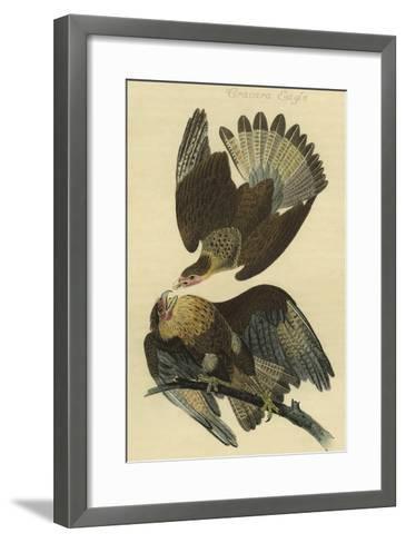 Cracara Eagle-John James Audubon-Framed Art Print