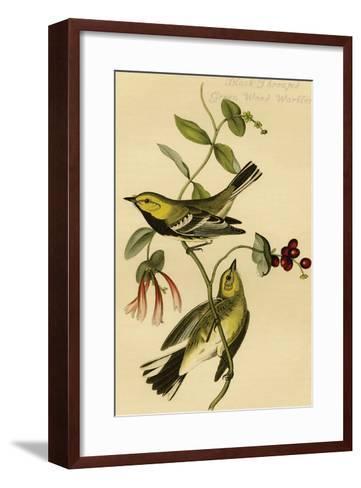 Black Throated Green Wood Warbler-John James Audubon-Framed Art Print