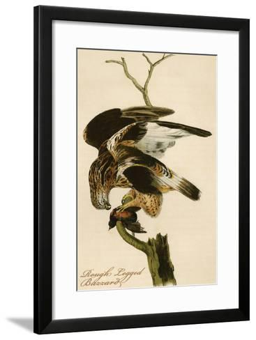 Rough Legged Buzzard-John James Audubon-Framed Art Print