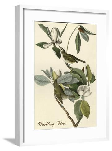 Warbling Vireo-John James Audubon-Framed Art Print