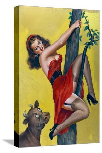 Moo; Up a Tree-Peter Driben-Stretched Canvas Print