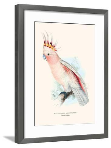 Leadbeater's Cockatoo - Cocatua Leadbeateri-Edward Lear-Framed Art Print
