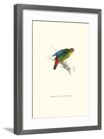 Red-Fronted Parakeet - Loriculus Philippinensis-Edward Lear-Framed Art Print