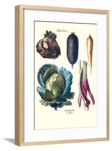 Vegetables; Rhubard, Tubers, and Cabbage-Philippe-Victoire Leveque de Vilmorin-Framed Art Print