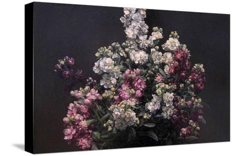 White and Purple Stock-Henri Fantin-Latour-Stretched Canvas Print