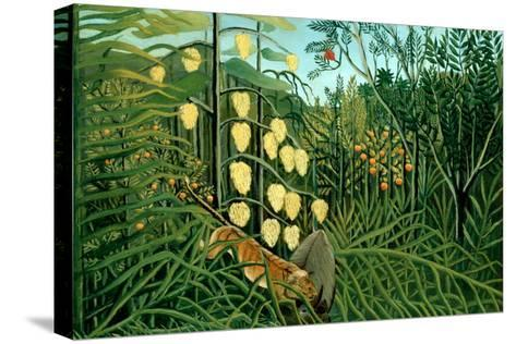 In a Tropical Forest; Tiger Attacks a Buffalo-Henri Rousseau-Stretched Canvas Print
