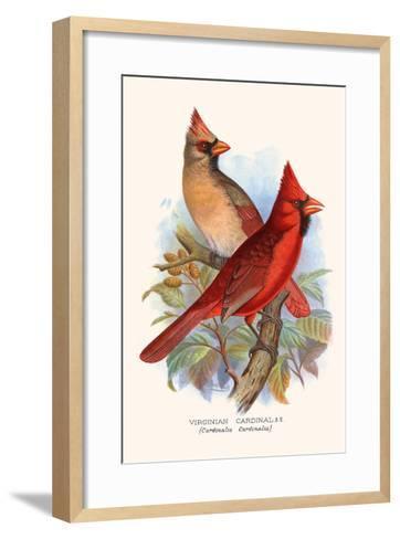 Virginian Cardinal-F^w^ Frohawk-Framed Art Print