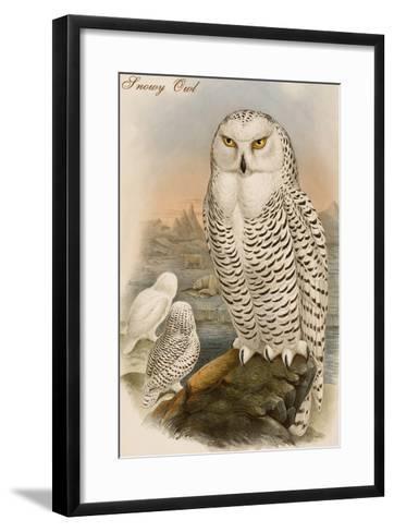 Snowy Owl-John Gould-Framed Art Print