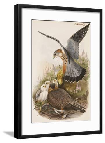 Merlin-John Gould-Framed Art Print