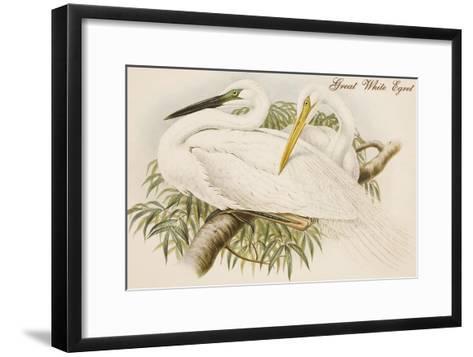 Great White Egret-John Gould-Framed Art Print