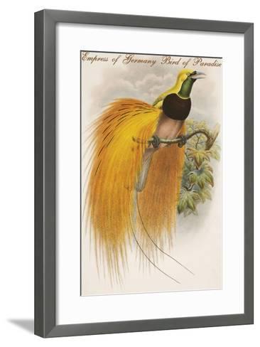 Empress of Germany Bird of Paradise.-John Gould-Framed Art Print