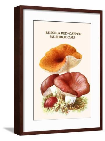 Russula Red-Capped Mushroooms-Edmund Michael-Framed Art Print