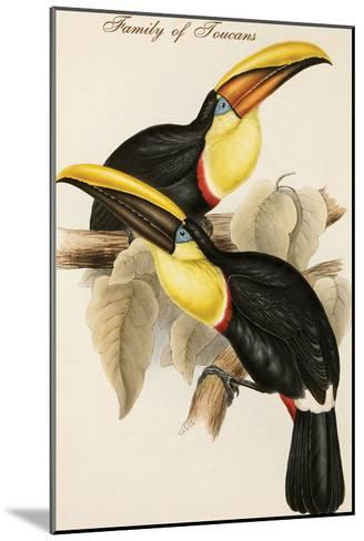 Family of Toucans-John Gould-Mounted Art Print