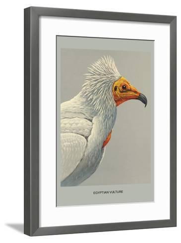 Egyptian Vulture-Louis Agassiz Fuertes-Framed Art Print
