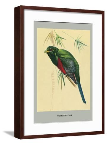 Narina Trogon-Louis Agassiz Fuertes-Framed Art Print