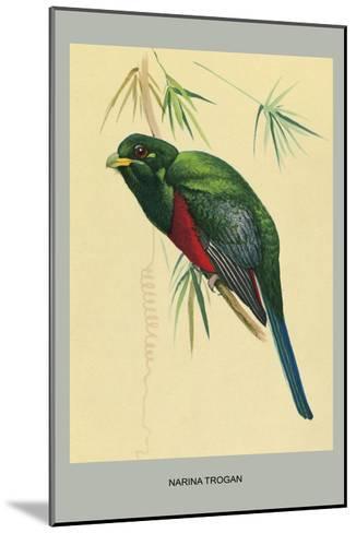 Narina Trogon-Louis Agassiz Fuertes-Mounted Art Print