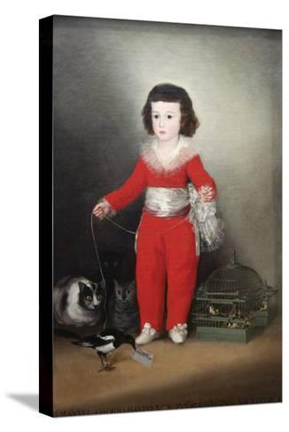 Manuel Osorio Manrique De Zuñiga, a Child with His Pets-Francisco de Goya-Stretched Canvas Print