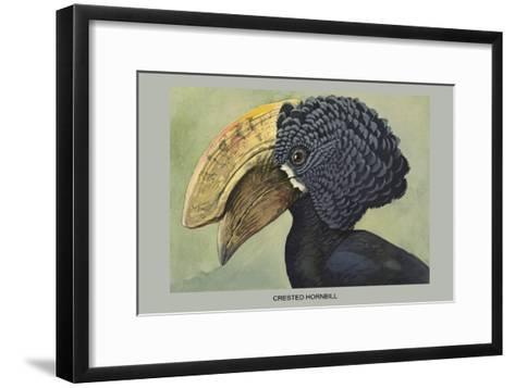 Crested Hornbill-Louis Agassiz Fuertes-Framed Art Print