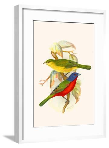 Nonpareil Bunting-F^w^ Frohawk-Framed Art Print