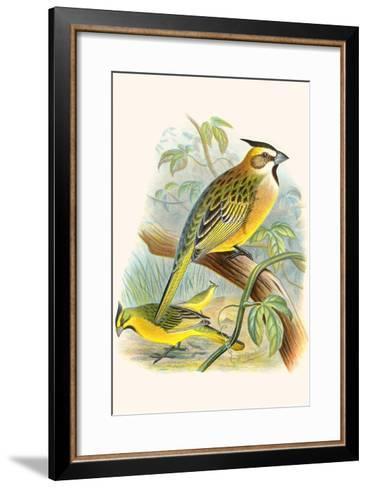 Green Cardinal-F^w^ Frohawk-Framed Art Print