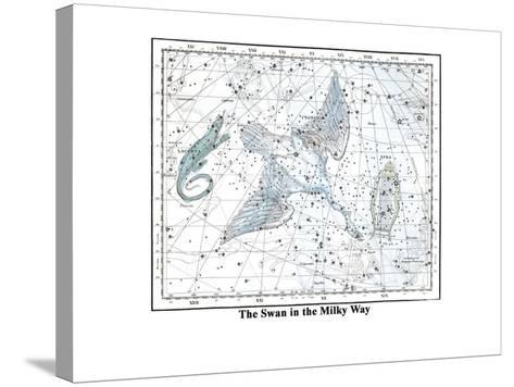 The Swan in the Milkyway-Alexander Jamieson-Stretched Canvas Print