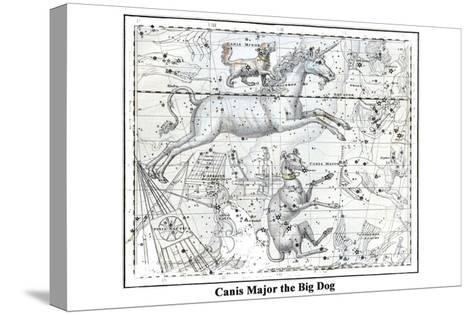 Canis Major the Big Dog-Alexander Jamieson-Stretched Canvas Print