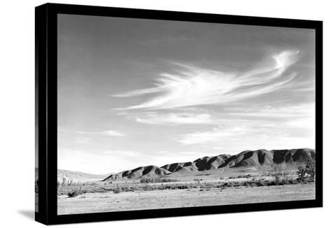 Landscape at Manzanar-Ansel Adams-Stretched Canvas Print