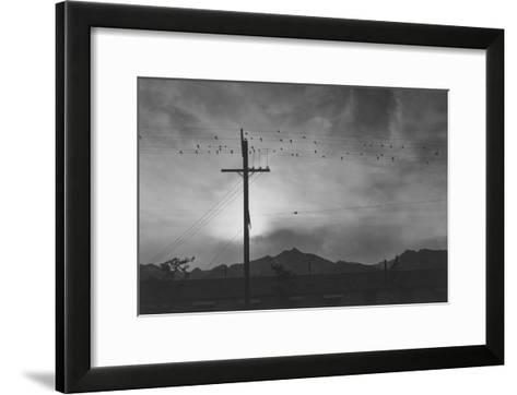 Birds on Wire, Evening-Ansel Adams-Framed Art Print