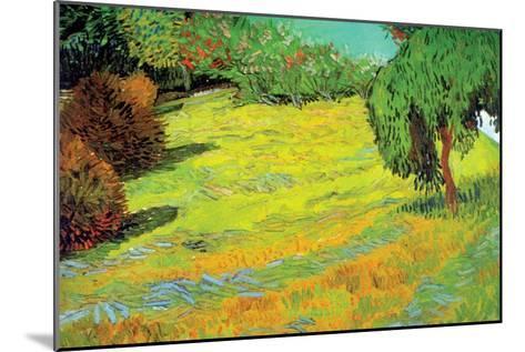 Sunny Lawn-Vincent van Gogh-Mounted Art Print