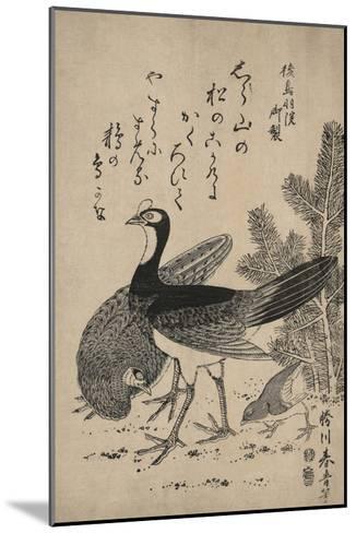Wildfowl and Pine-Katsukawa Shunsei-Mounted Art Print