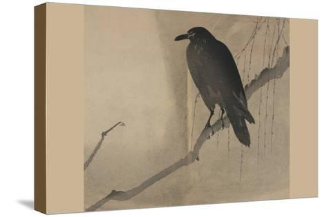 Crow on a Willow Branch--Stretched Canvas Print